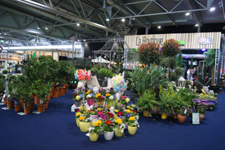 Emejing Salon Jardin Exterieur Mulhouse Ideas - House Design ...